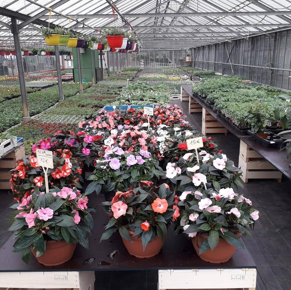 Horticulture Hautenauve